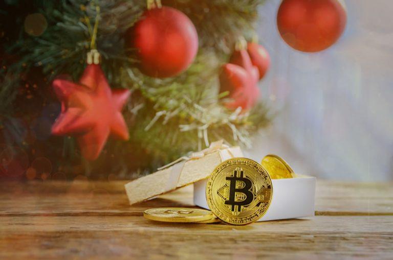 Digital Coin Owner