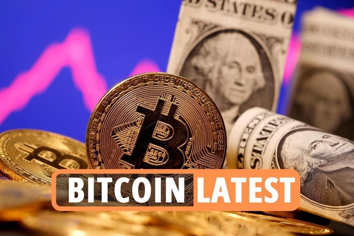 Bitcoin-Preisnachrichten LIVE – Bitcoin und Ethereum volatil, da Banken gegen Krypto in den Krieg ziehen, nachdem Elon Musk Dogecoin unterstützt hat